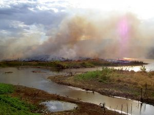 Progressive Views: Fiddling While the Planet Burns