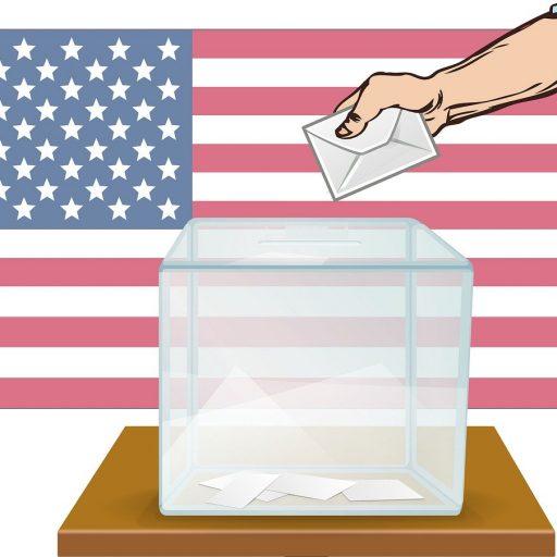Listos para participar en las elecciones primarias