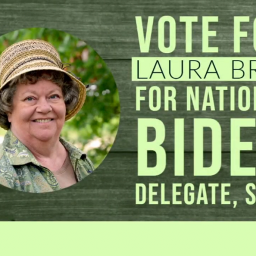 Laura Bray: Candidate for DNC Delegate