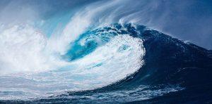 Help Build the 2020 Blue Wave!