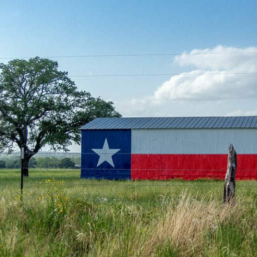 Progressive Views: The Top Six Priorities for Rural Texas